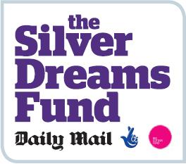 Silver Dreams branding