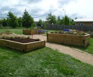 Community garden picture