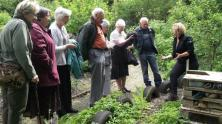 St John's friendship group take a closer look at bug hotels