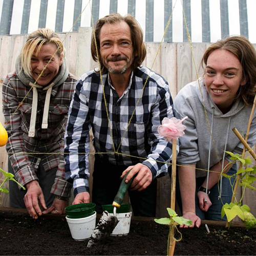 Three people gardening