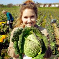 Brassica-gleaning-8